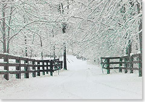 Winter Tracks Christmas Boxed Cards (Greeting Cards) (Small Holiday Card Series)