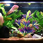 MIHOUNION 28.5cm Artificial Aquarium Plastic Plants Fish Tank Aquatic Ornaments Durable Realistic Tropical Vivarium… 12