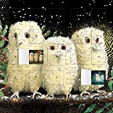 Owl Babies Calendar With Stickers