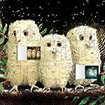 Owl Babies Advent Calendar (with Stic...