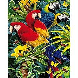 Kit de pintura al óleo por número para niños y adultos, 40 x 50 cm, diseño de flores y loros, dibujo con pinceles, decoración de Navidad, regalos Without Frame