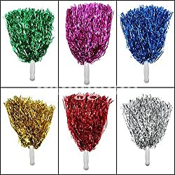 Amit Marketing Pom Poms (Florotion Color) pack of 4PIC ( 2Par )