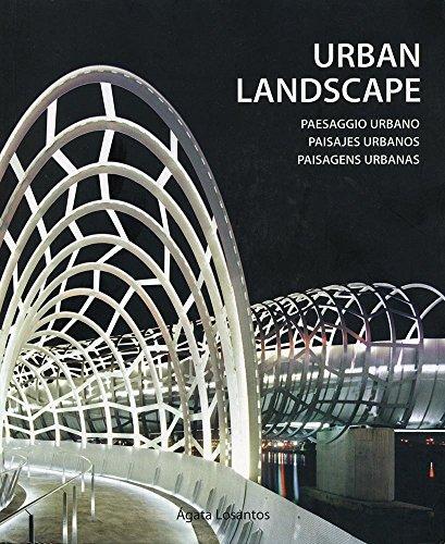 Descargar Libro Libro Paisajes urbanos de Agata Losantos