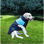 ubest Dog Coat Waterproof with D-Ring Warm Padded Puffer Vest Blue Small 4