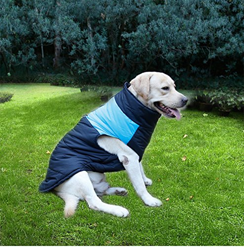 ubest Dog Coat Waterproof with D-Ring Warm Padded Puffer Vest Blue Small 2