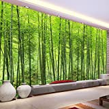 Wallpaper Experten Benutzerdefinierte Fototapete Bambus Wald Kunst Wandmalerei Wohnzimmer Tv Hintergrund Wandbild Home Decor Wallpaper Papel De Parede 3D 350cmX245cm(137.8 by 96.5 in )