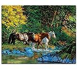Mountain Stream Pintura Al Óleo por Números Tres Caballos para Colorear Río...
