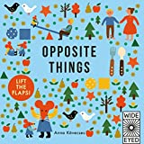 Opposite Things (Learn with Little Mouse)
