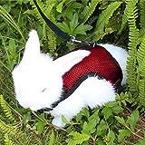 Happy Hachi Confortevole Imbracatura per Coniglio con Elastico Guinzaglio Morbido Pettorina Traspirante per Piccoli Animali Criceti Gatti(L Rosso)