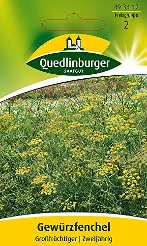 Kräutersamen - Gewürzfenchel Großfrüchtiger von Quedlinburger Saatgut
