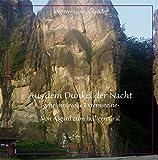 Aus dem Dunkel der Nacht -geheimnisvolle Externsteine-: Von Asgard zum heiligen Gral - Jörg Hermann Schröder