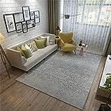 QAZ Hochwertige Super weiche Decke Designer Teppich Wohnzimmer Schlafzimmer Bett einfach modernen nordischen Couchtisch Mat graue Wolldecke Nordic Designer Rutschhemmende Nicht reizend Teppich (Größe: 120 * 160 cm)