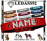 LEDASS92 Hundehalsband mit Namen Strass Halsband Name Strassbuchstaben Swarovski Elements (L - 35cm - 43cm Halsumfang verstellbar, rot)