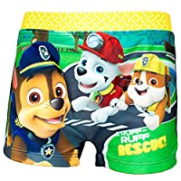 Nickelodeon Official Paw Patrol Boys Swimming Boxers, Briefs 2-6 Years - Blue 3Y