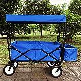 Ali Lamps@ Reine Farbe im Freien Kind Trolley, Wochenende Camping Angeln Gepäckwagen, Haushalt Einkaufswagen, 120 kg laden (Farbe : Blue)