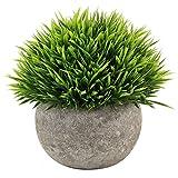 Kbnian Mini Künstliche Topfpflanzen Gefälschte Grünpflanzen Kunststoff Gras für Indoor und Outdoor Decor Grün