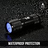 LE Ultra Violet LED Flashlight/Blacklight Torch, UV LED Flashlight, 9 LED 395nm, Pet Urine & Stain Detector, 3 AAA Batteries Included, Find Stains on Clothes, Carpet or Rugs Bild 2