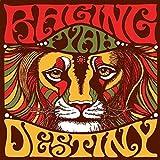 Destiny [Vinyl LP] -