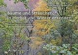 Bäume und Sträucher in Herbst und Winter erkennen: Bebilderte Steckbriefe, Wissenswertes zu Namen, Mythologie und Verwendung