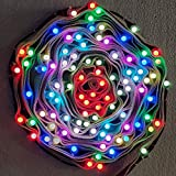 40 Foot 100 LED 14 color PIXEL LED Lights on Belt, With Controller And Power Supply, Made in India Product String Lights Diwali Special Home Decoration Christmas Gifts Rice Copper Wire Lights by Lance Energy Solutions