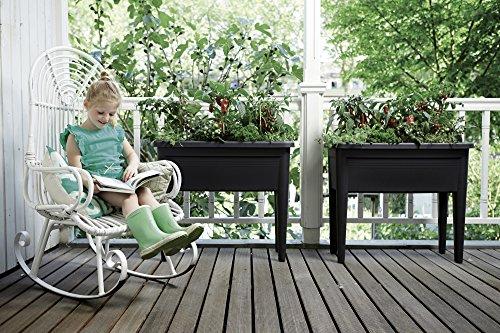 Balkon Hochbeet Ratgeber Infos Top Produkte
