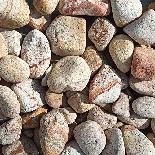 Regenbogen Edelkies Kies Zierkies 25-50mm beige-rot rund 25kg