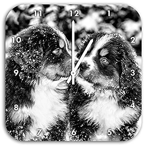Monocrome, Bernese Mountain dog puppies in the snow, wall clock diameter 28cm with white pointed the hands and face, decoration items, Designuhr, aluminum composite very nice for living room,