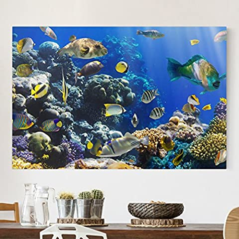 Bilderwelten Impression sur toile - Underwater Reef - Large 2:3, toile imprimée toile impression photo sur toile xxl décoration murale art murale, Dimension: 100cm x