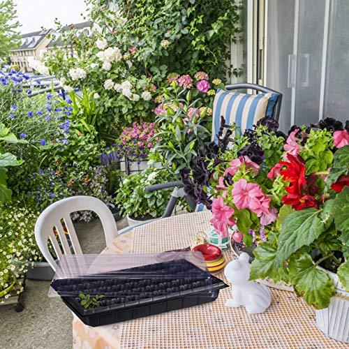 Relaxdays Zimmergewächshaus 50 Pflanzen, Deckel, Mini Gewächshaus, Terrasse, Balkon, Anzuchtschale, 55,5×29 cm, schwarz