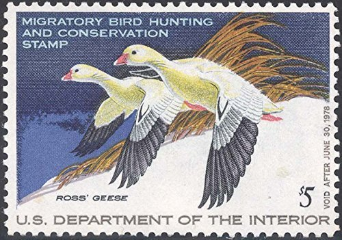 Scott RW44 $5 Federal Duck Stamp Mint Very Fine. Never Been Hinged. by USPS -