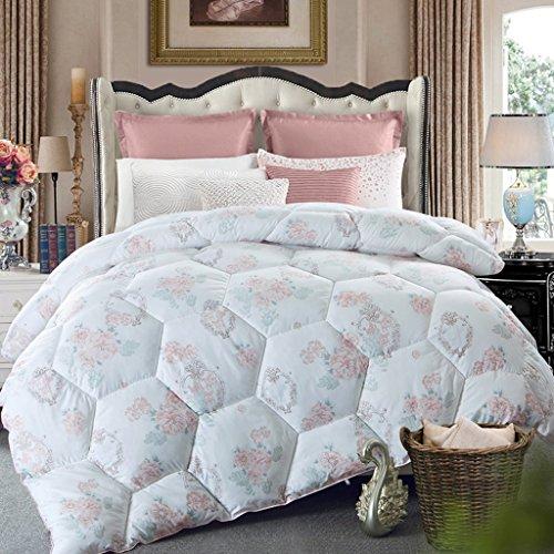 MMM Printemps et automne Quilt Hiver plus épais Garder un étudiant chaleureux Quilts Literie douce Quilt Individual Core ( taille : 150*200cm(2.5kg) )
