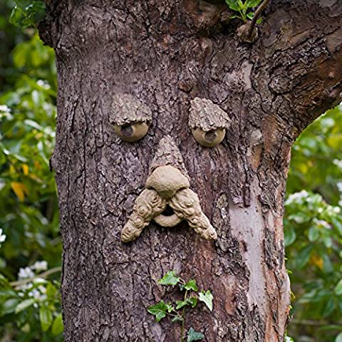 Little Jack Forest Tree Face – Fun Garden Ornament Statue – Great garden fun for Kids or to give as a gift