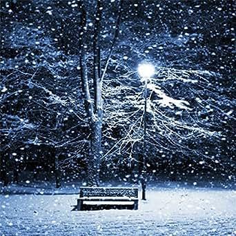 Coosa Christmas Led Projector Light Snowfall Waterproof