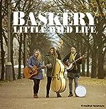 Songtexte von Baskery - Little Wild Life