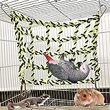 Crazywind Échelle d'escalade en Coton pour Perroquet et Animal Domestique à Suspendre