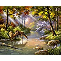 ABEUTY DIY Paint by Numbers for Adults Beginner - Deer Forest Sunlight Trees River 16x20 inches Number Painting Anti Stress Toys (No Frame)