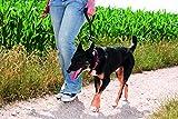 The perfekt Leash - HEELER kurz Silikon-Hundeleine, schwarz