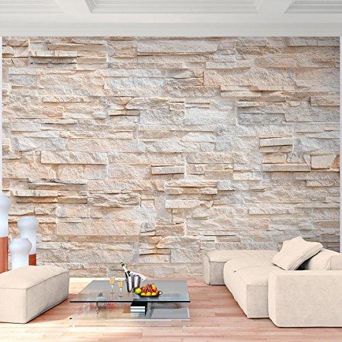 Fototapete Steinwand 308 x 220 cm - Vliestapete - Wandtapete - Vlies Phototapete - Wand - Wandbilder XXL - !!! 100% MADE IN GERMANY !!! Runa Tapete 9082010a