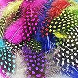 JPSOR 120 Stück 3''-6'' Bunte gefleckte indianer Feder für DIY Kunstwerk, Schmucken und Bekleidung Dekoration, 10 Farben -