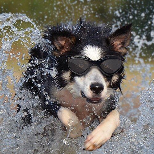 Namsan stilvolles und Fun Tier / Hundewelpen UV-Schutzbrillen Sonnenbrille wasserdichten Schutz Sun-Brille fuer Hunde-Black