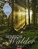 Heimische Wälder - Kalender 2019 - Weingarten-Verlag - Duftkalender mit Zitaten - 30,0 cm x 39,0 cm