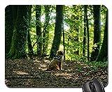 Gaming-Mauspads, Mäusematte, Hundetier Wald gemischt Forest Autumn Rest Silent