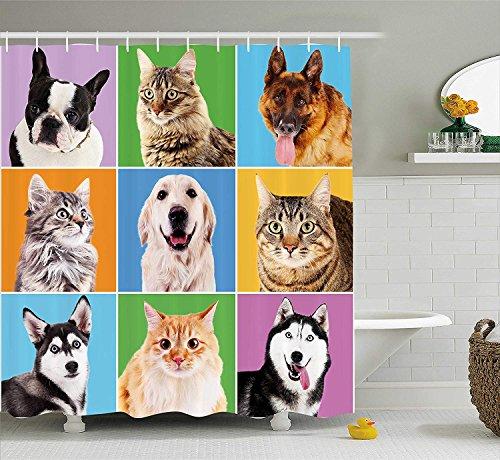 Nyngei Tier Duschvorhang von niedlichen verschiedenen Hund und Katze Porträts Welpen Kätzchen Pet Company lustige Humor Design Stoff Badezimmer Dekor Set mitMulticolor -