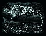 Mammut 137002 - Kratzbild silber - Leopard