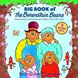 Big Book of The Berenstain Bears (Berenstain Bears First Time Books)