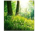 Eau Zone Wandbild auf Leinwand 60x60cm Pusteblumen im Wald