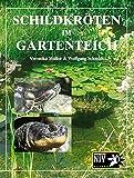 Schildkröten im Gartenteich (NTV Garten)