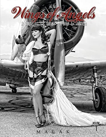 Wings of Angels: A Tribute to the Art of World War II Pinup & Aviation