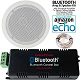 Best Ceiling Speakers - SMART HOME Bluetooth Amplifier & 1x Premium Dual Review