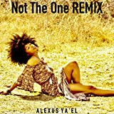 Not the One (Remix)